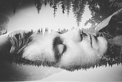 Dream a little dream (julieannesjones) Tags: cameraphone trees sleeping blackandwhite bw mountains bed sleep doubleexposure dream dreaming caught iphone 6s