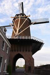 De molen van Wijk bij Duurstede (Pics4life.nl) Tags: city mill netherlands nederland nl molen buiten wijkbijduurstede