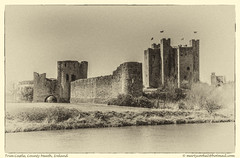 Trim Castle (Marty Cooke) Tags: ireland castles monochrome outdoor irishhistory boyne meath leinster countymeath irishcastle riverboyne irishcastles blackwhitephotos nikond600 normanireland medievalireland silverefex nikcollection