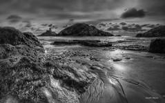 Untitled (Geoff Mock) Tags: blackandwhite bw beach bay rocks wideangle mumbles mumbleslighthouse tokina1116mm silverefexpro nikond7000