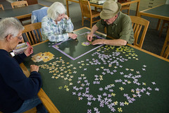 Puzzle People (Lester Public Library) Tags: library libraries puzzle publiclibrary jigsawpuzzle lpl publiclibraries libslibs librariesandlibrarians 365libs lesterpubliclibrary readdiscoverconnectenrich wisconsinlibraries lesterpubliclibrarytworiverswisconsin