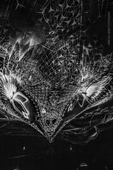 Black Dragon (vinicius.vieira89) Tags: brazil blackandwhite bw textura beautiful beauty branco brasil night dark painting photo dragon pb preto e noite pretoebranco fundo 18mm photograpy f35 fundopreto monocromtico