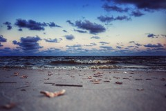 """siren sound (listening to """"didn't leave nobody but the baby"""", emmylou harris, alison krauss, gillian welch) (jeneksmith) Tags: sea sky shells seascape beach nature water clouds seashells canon coast sand rocks waves natural shoreline coastal shore waterscape mississippisound canoneos70d"""