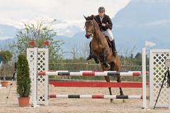DSC09247_s (AndiP66) Tags: springen hildisrieden reitsportcenter estermann traselinge 2016 pferd horse schweiz switzerland kantonluzern cantonlucerne concours wettbewerb horsejumping equestrian sports springreiten pferdespringen pferdesport sport sony sonyalpha 77markii 77ii 77m2 a77ii alpha ilca77m2 slta77ii sony70400mm f456 sony70400mmf456gssmii sal70400g2 andreaspeters luzern ch