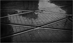 Manchester city centre (Pitheadgear) Tags: blackandwhite bw monochrome lines manchester mono transport trams tramlines diagonals leicaq