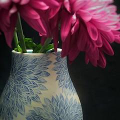Blue Sgraffito (leavesofclay) Tags: dahlia blue carving vase pottery chrysanthemum porcelain sgraffito leavesofclay