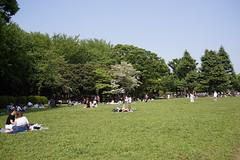 DSC00199 (koyaman3422) Tags: nikon sony 28mm harajuku