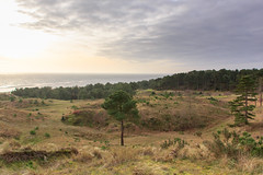 Vlieland (Ralph Apeldoorn) Tags: sea waddenzee vlieland dunes nederland zee friesland duin