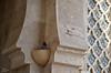 The little guardian (Abd-Elilah Ouassif) Tags: monument birds architecture outside nikon mosque morocco maroc casablanca extérieur oiseaux mosquée hassanii 2011 abdelilah ouassif d7000 18105mmf3556gvr