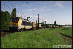 NMBS / SNCB 1312 Ekeren 31052013 (W. Daelmans) Tags: electric locomotive 13 alstom nmbs 1312 sncb hle