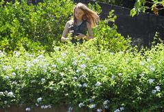 34/366 Hair in the wind (JessicaBelotto) Tags: flowers light flores luz sol me nature this is peace foto ar wind natureza eu paz days honey jardim antiga zenit ao fotografia projeto livre vento árvores câmera fotográfico mesma cabelos fotografando 366 loiro 366daysofhoney 366diasnoano