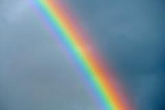 Panetone Dans La Ciel (Flortography) Tags: color colour nature washington rainbow arc shades colores ciel tones panetone