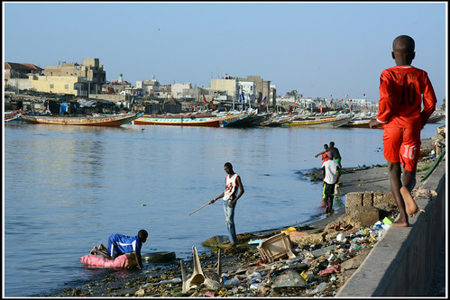 セネガル 画像50