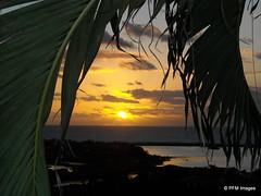 Sunrise on Orient Bay (pandt) Tags: ocean sunset sky sun seascape beach water clouds sunrise landscape nikon outdoor stmartin palmtrees coolpix caribbean sunbeams waterscape orientbeach
