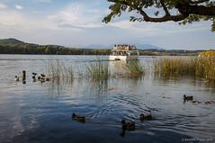 Navegantes (SantiMB.Photos) Tags: espaa lake geotagged lago boat barco ducks esp patos banyoles cataluna 2tumblr sal18250 2blogger geo:lat=4211802618 geo:lon=275655720