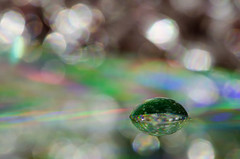 3/366 - Foil/CD/droplet (Spannarama) Tags: macro closeup reflections december colours spectrum bokeh foil cd drop droplet 365 tinfoil compactdisc waterdroplet aluminiumfoil reftraction