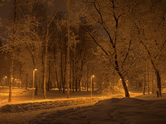 snowy dream (Sergey S Ponomarev) Tags: park winter light snow nature night canon garden landscape eos evening europe mood russia walk branches north january dream silhouettes natura neve lamps trunks paysage inverno stroll hdr highdynamicrange paesaggio nord russie gennaio eurasia  kirov 2016  russland             vyatka  70d      sergeyponomarev ef24105f40l  viatka kirow