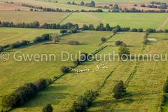 Marais Vernier-4 (Gwenn Dubourthoumieu) Tags: france nature normandie geo marais ecologie environement maraisvernier