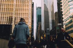 Outside, a dream (focusfade) Tags: street city urban toronto film canon photography cntower grain streetphotography explore fullframe filmgrain lightroom 6d urbex lseries digitalfilm 6ix vsco vscofilm createexplore creatorclass