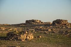 Quelques cairn (Dlirante bestiole [la posie des goupils]) Tags: tomb archeology saudiarabia cairn bronzeage tumulus arabie frenchteam kharj