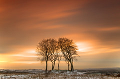 The Sisters at Sunset (Glenn D Reay) Tags: longexposure trees sunset snow clouds landscape pentax sevensisters copse copthill houghtonlespring k30 sigma1770hsm 10stopfilter pentaxart glennreay