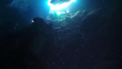 Manta ray swimming towards me (Yuxuan.fishy.Wang) Tags: hawaii video scuba diving manta mantaray