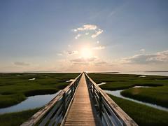 P1050769 (stanislas.gros) Tags: wood bridge summer vacation sky usa green america landscape holidays long massachusetts roadtrip calm swamp cape cod endless 2015