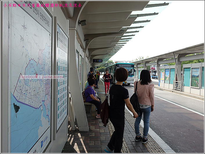 大阜島海邊香氣公園 (2).JPG