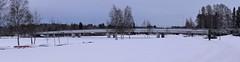 Panorama 6 (arto hkkil) Tags: bridge snow ice beach finland oulu lumi birchtrees ranta j  silta     koivut pukukoppi