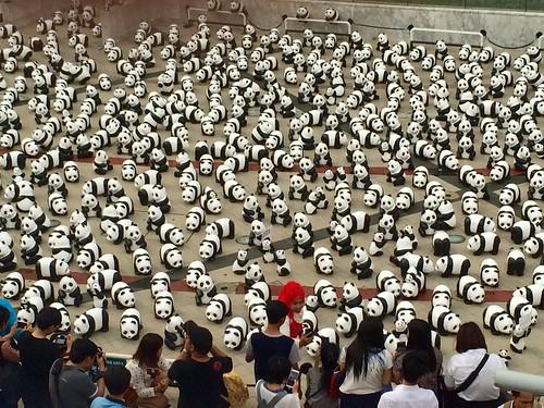 Mille Pandas, Bangkok