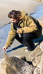sel040516k-10 (StephenLongbook) Tags: beach beautiful windy hampton hamptonbeach prettygirl sandybeach goodday