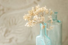 tones for Tuesday (s@ssyl@ssy) Tags: vintage aqua bottles lace antique turquoise teal vase hydrangea dried