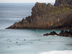 Surfers at Laga Beach, Basque Country