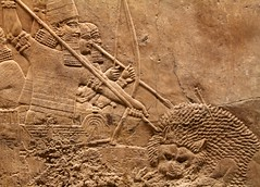 Assyrian Lion Hunt (richardr) Tags: old uk greatbritain england london english heritage history museum ancient europe european unitedkingdom britain lion historic bloomsbury british britishmuseum europeanunion hunt assyria assyrian ashurbanipal