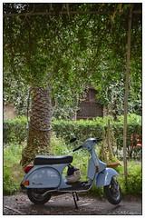 Blue Vespa, Taormina ... (junepurkiss) Tags: italy vespa scooter motorbike motorcycle sicily moped taormina bluevespa