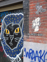 Cat on the wall, a the housefronts of Prinsengracht in Amsterdam city; urban wall painting art; geotagged photo (Amsterdam city photos, geotagged) Tags: city urban house art public netherlands dutch amsterdam wall writing cat painting print geotagged photography for graffiti photo stencil image outdoor text picture free prinsengracht domain fronts