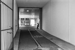 heart of gold (gato-gato-gato) Tags: street leica bw white black classic film blanco monochrome analog 35mm person schweiz switzerland flickr noir suisse strasse negro streetphotography pedestrian rangefinder human streetphoto manual monochrom zrich svizzera weiss zuerich blanc m6 manualfocus analogphotography schwarz ch wetzlar onthestreets passant mensch sviss leicam6 zwitserland isvire zurigo filmphotography streetphotographer homedeveloped fussgnger manualmode zueri strase filmisnotdead streetpic messsucher manuellerfokus gatogatogato fusgnger leicasummiluxm35mmf14 gatogatogatoch wwwgatogatogatoch streettogs believeinfilm tobiasgaulkech