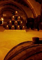 The cellar (Veronicamente) Tags: cantina cellar sicilia vino botti marsala florio
