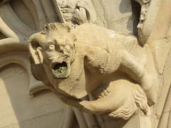 20150310 Rhne Lyon - Cathdrale Saint Jean - Gargouilles (4) (anhndee) Tags: france frankreich cathedral lyon rhne gargoyle cathdrale gargouille cathedrale rhonealpes gargouilles