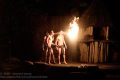 Thambuakar (Stinkee Beek) Tags: nightsafari thambuakar
