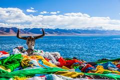 Guarding the lake (Kelvinn Poon) Tags: yak lake skull tibet namtso     nagqu  lakenam nyenchentanglhamountains