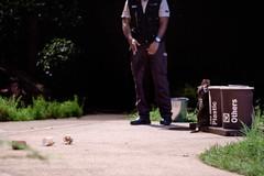 Recycling otter (Stinkee Beek) Tags: nightsafari
