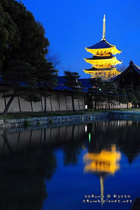 2014東寺夜櫻 (1).jpg