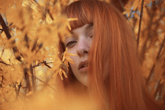 (Eleonora Brutti) Tags: orange woman girl beauty youth spring natural portraiture delicate redhair floreal femalephotography