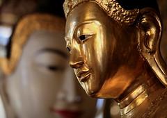 The Buddha At The Shwedagon (El-Branden Brazil) Tags: asian temple asia southeastasia buddha shwedagon yangon burma buddhist religion buddhism holy monks sacred mystical myanmar burmese rangoon myanmarese
