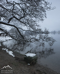 A Winters Day On Grasmere (.Brian Kerr Photography.) Tags: winter mist snow tree grasmere lakes lakedistrict cumbria xt1 briankerrphotography fujiuk