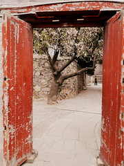 P1030637 (NL60D) Tags: beijing greatwall jinshanling tianamensquare summerpalace hiking hike cherryblossom hutong food peking china asia northasia greatchina travel tourist travelphotography ngc wanderlust travelasia asiatravel