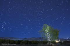 StarStaX_18957 (surluis) Tags: nocturna circumpolar