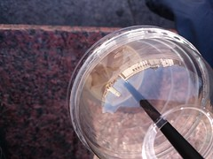 Cup (modestmoze) Tags: city red white black reflection ice cup coffee architecture outside outdoors grey cathedral straw plastic marble lithuania vilnius 2015