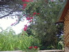 SNV31382 (j.annsofie) Tags: park men kilimanjaro kenya nairobi national från maasai och vackra maras mot sidan henrikjönsson annsofiejönsson anboselis